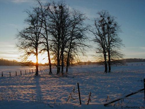 Winter 2012/13 Foto
