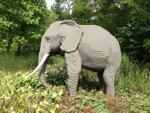 LEGOLAND Safari Elefant