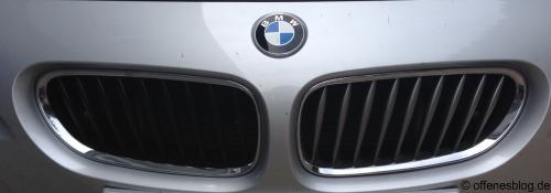 BMW Nieren/Grill Austausch