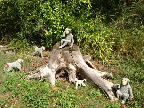 LEGOLAND® Deutschland Safari - Affen