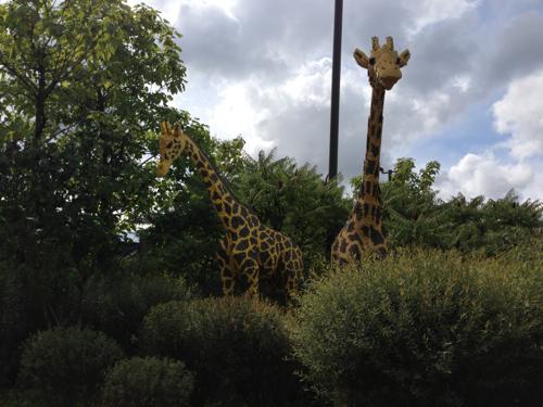 LEGOLAND® Deutschland Safari - Giraffen
