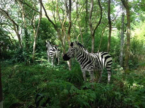 LEGOLAND® Deutschland Safari - Zebras